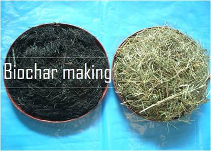 biochar making title HP-2